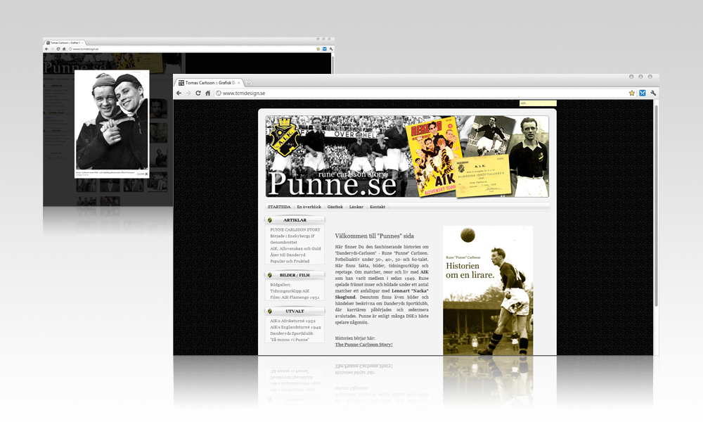 punne-portfolio-webutveckling-stor